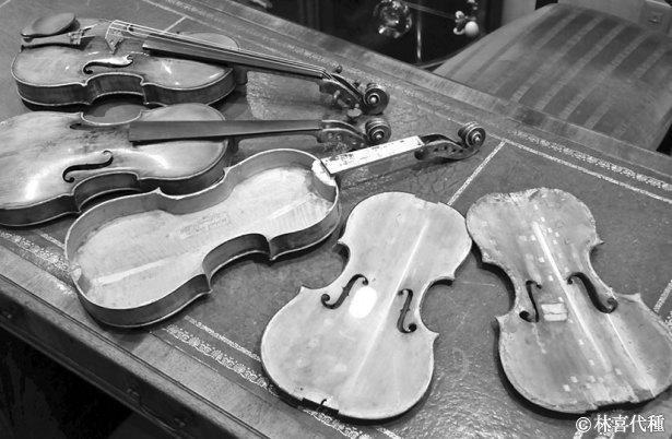 ヴァイオリン分解 モノクロ
