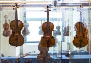 ヴァイオリン展示 ショーケース